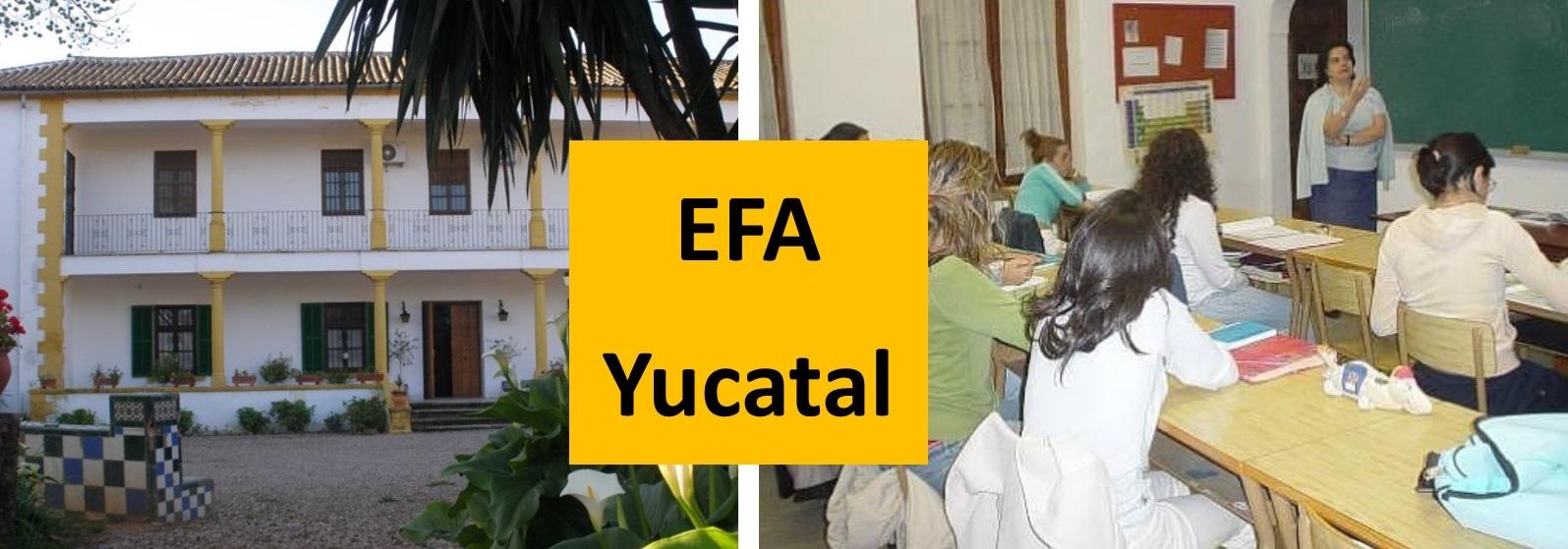 yucatal